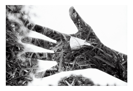 mano doble exposición