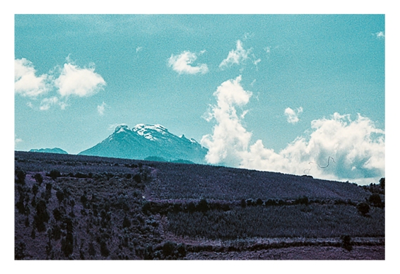 popocatepetl lomo purple