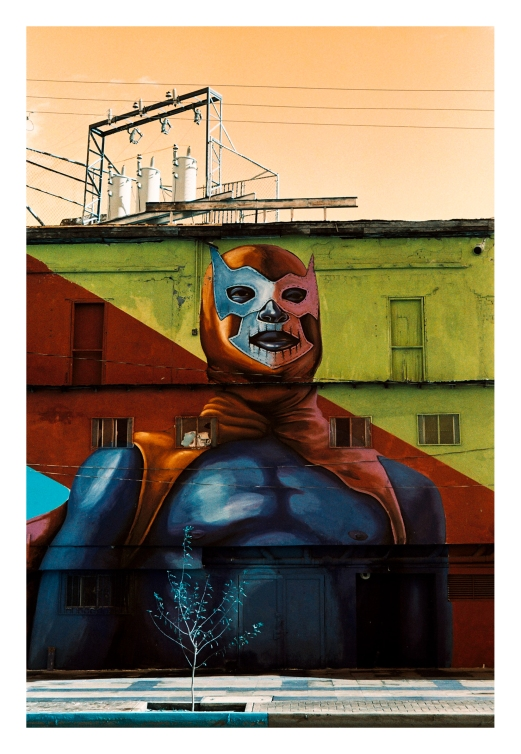 Mural Blue Demon
